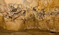 Les débuts de l'humanité. Entrer dans la préhistoire  par les représentations.