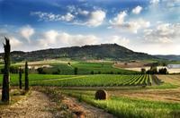 « Les espaces ruraux : multifonctionnalité ou fragmentation ? »