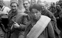 Un point historiographique sur les prisonniers de guerre (1914/1918  - 1939/1945)